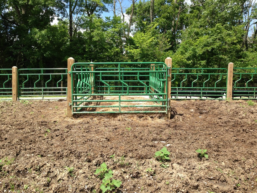 farm feeder horse feeders hay cattle covered built